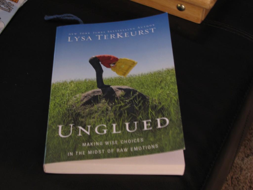 Lysa TerKeurst book